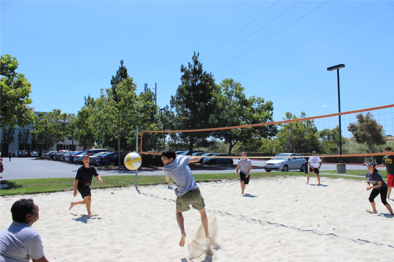 Company Volleyball tournament to raise money for Autism