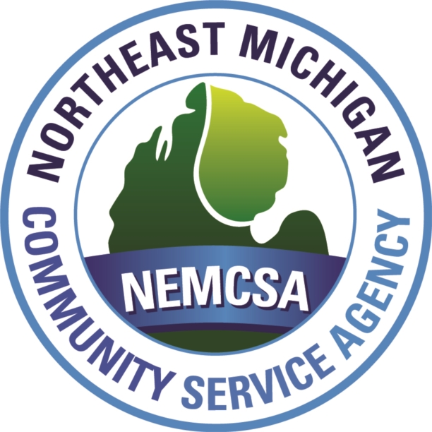 NEMCSA logo