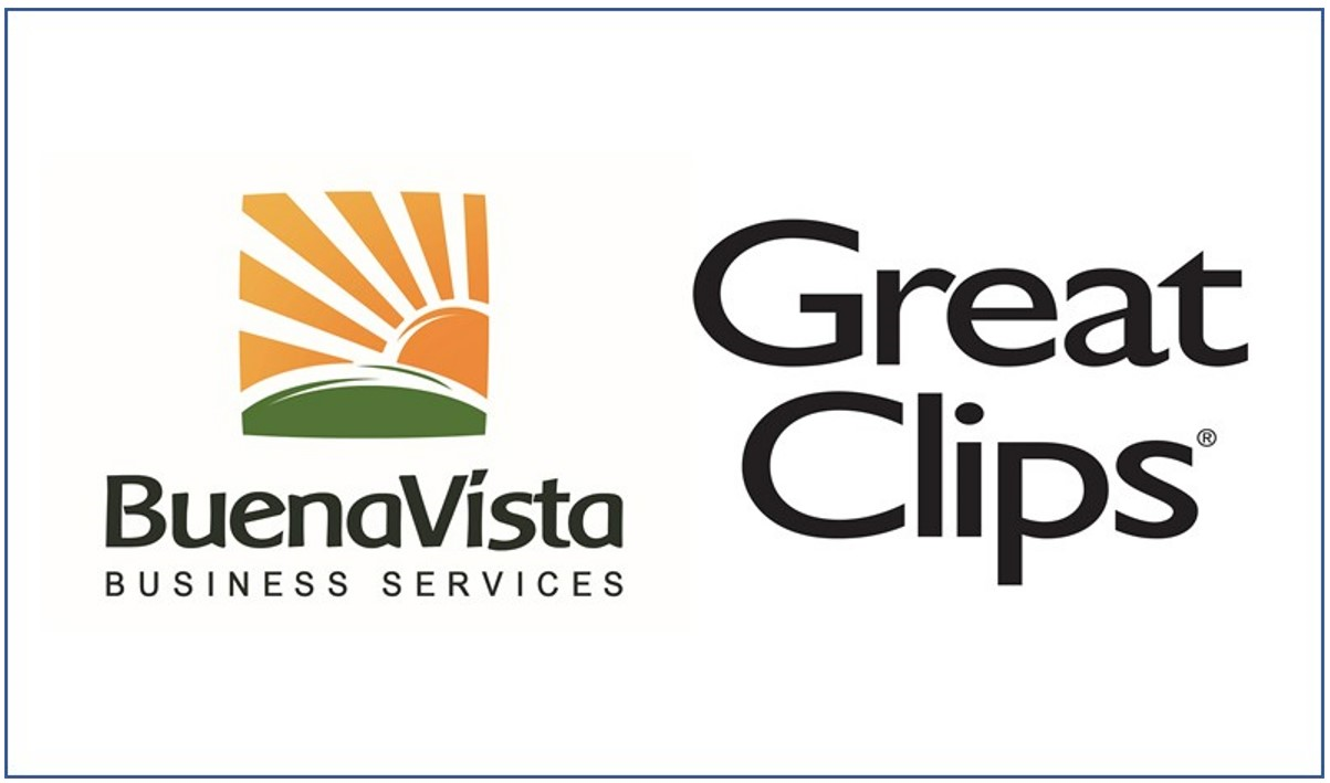 Buena Vista Business Services LP logo