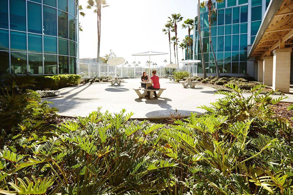 Outdoor meeting space