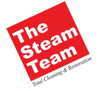 The Steam Team logo
