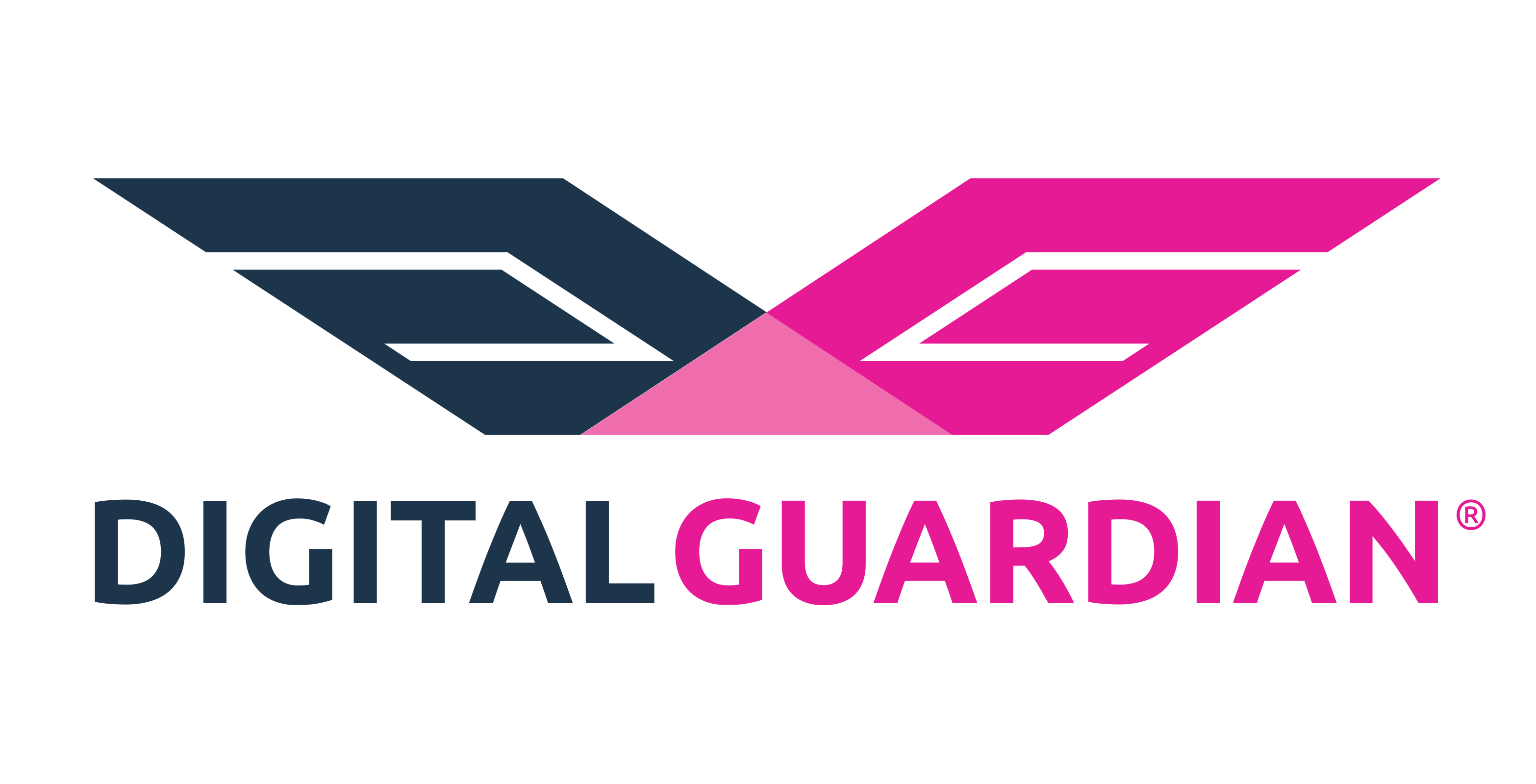 Digital Guardian Company Logo