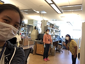 """YAY, we're back in the lab!"" Siqi Gao, Melinda Wu and Charmain Fernando get back to onsite research together after months of staggered shifts."