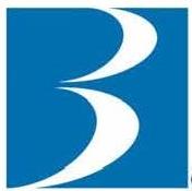 Brandywine Trust Company, LLC logo
