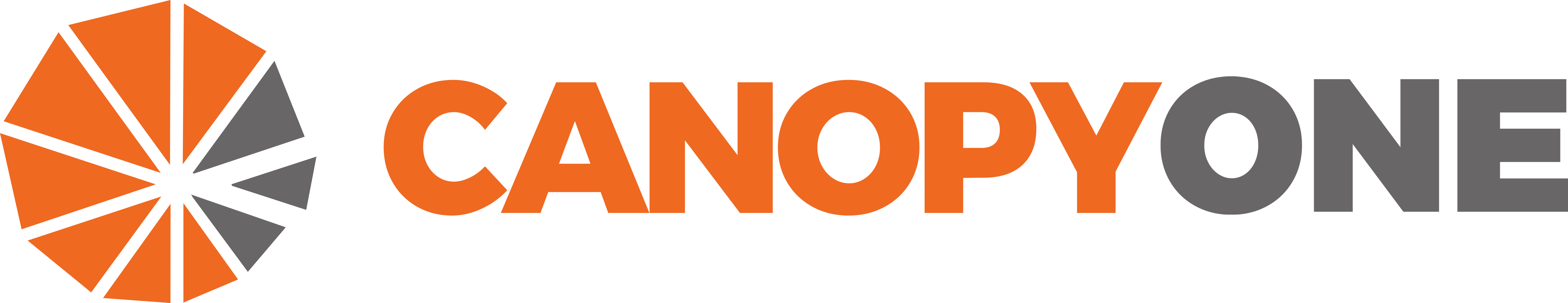 Canopy One Solutions logo