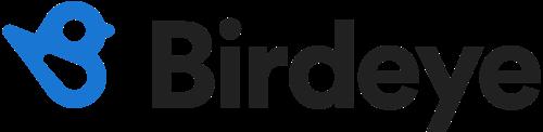 Birdeye Company Logo