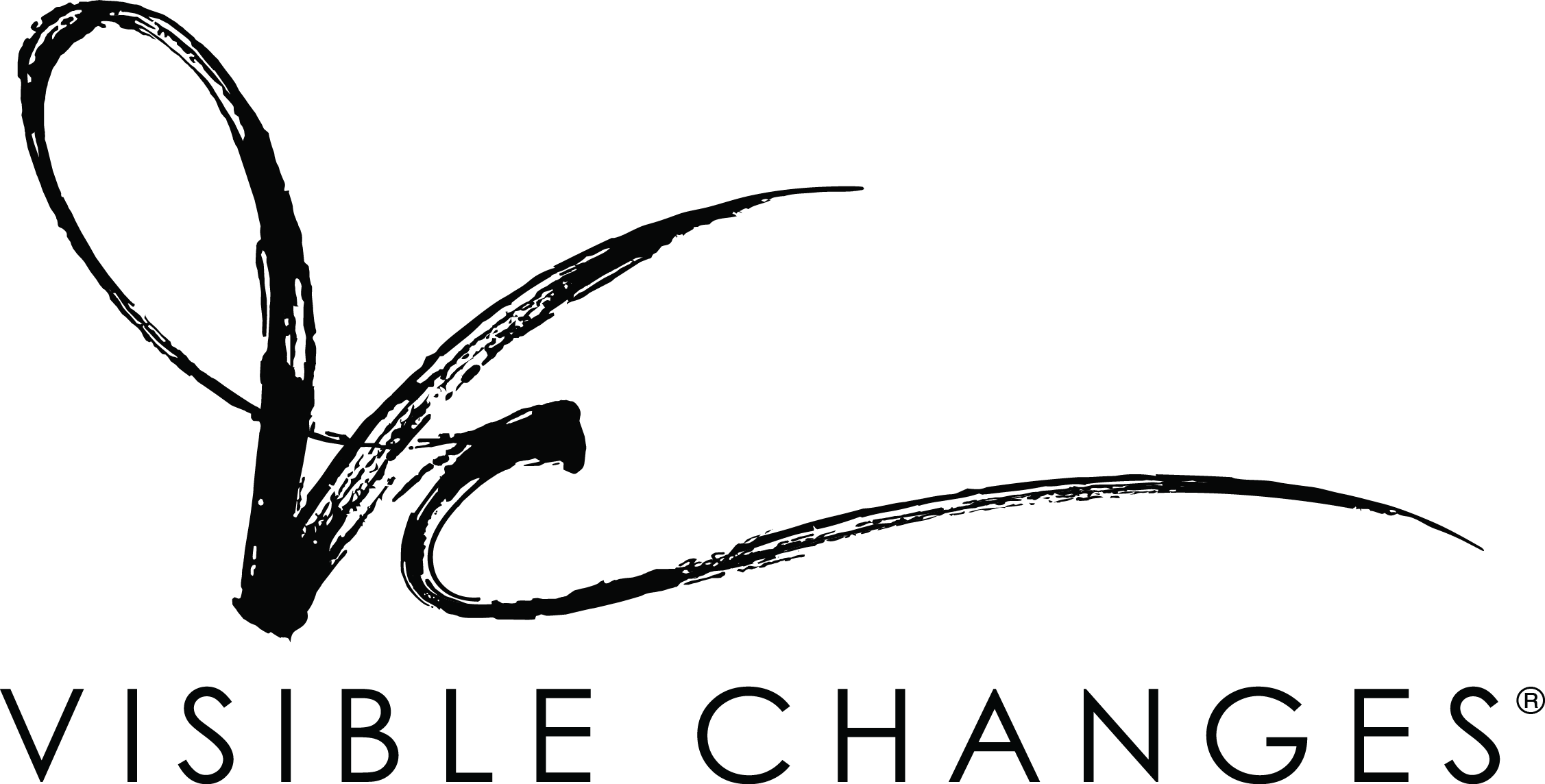 Visible Changes Company Logo