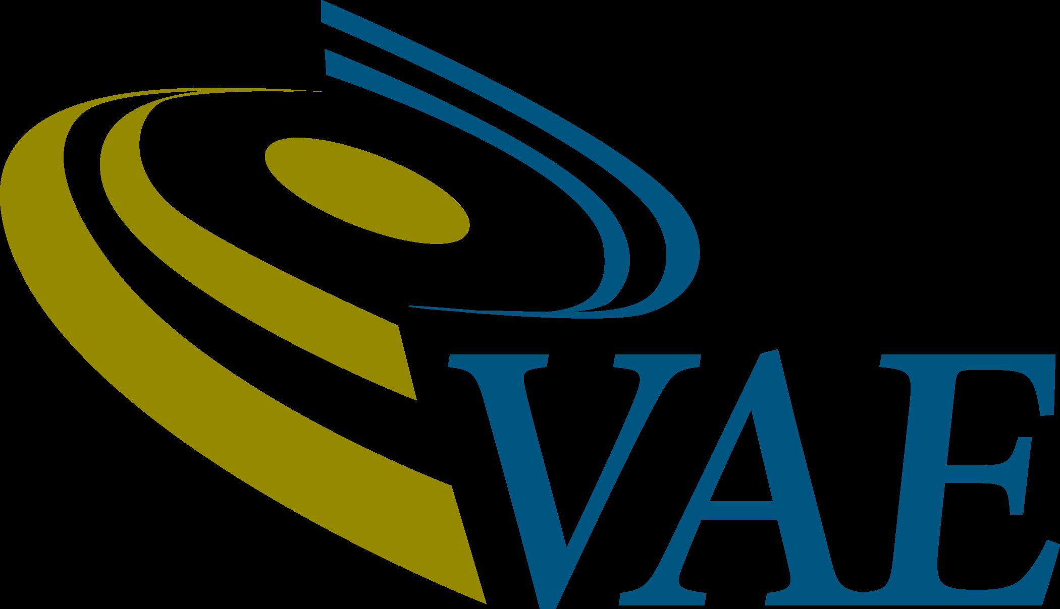 VAE Inc logo