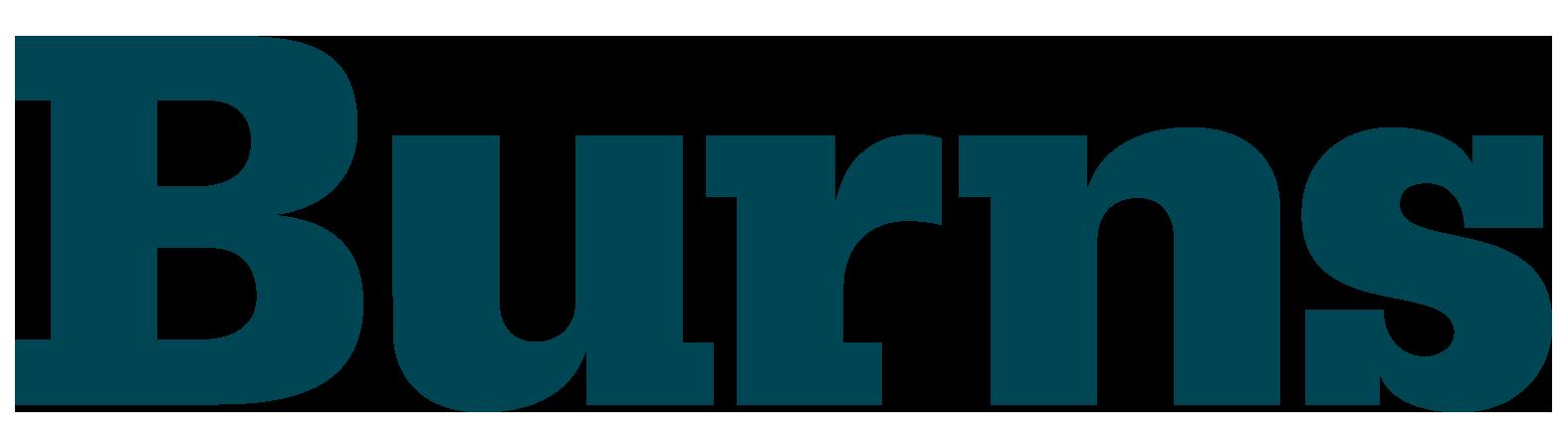 Burns Engineering, Inc. logo