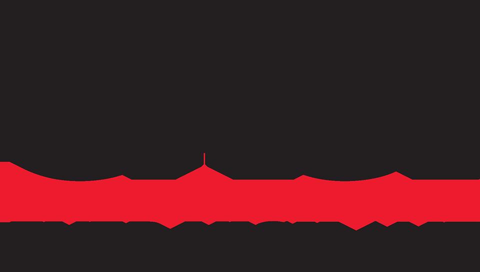 CACI International Inc Company Logo