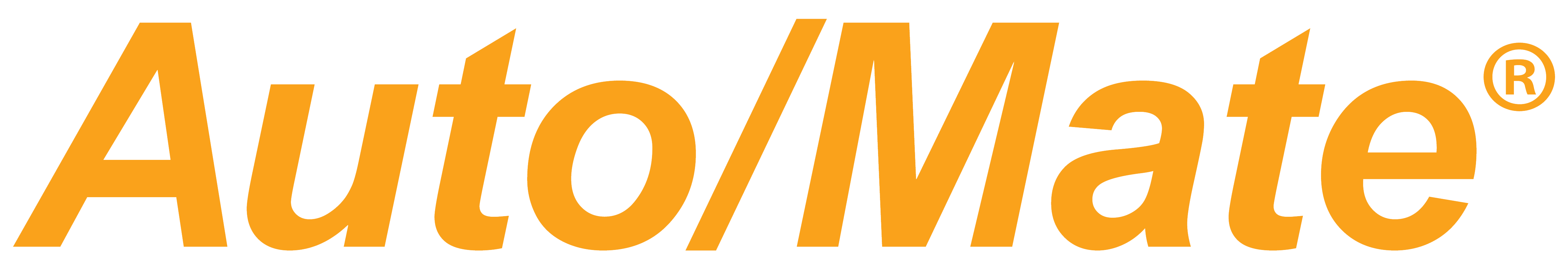 Auto/Mate by DealerSocket logo