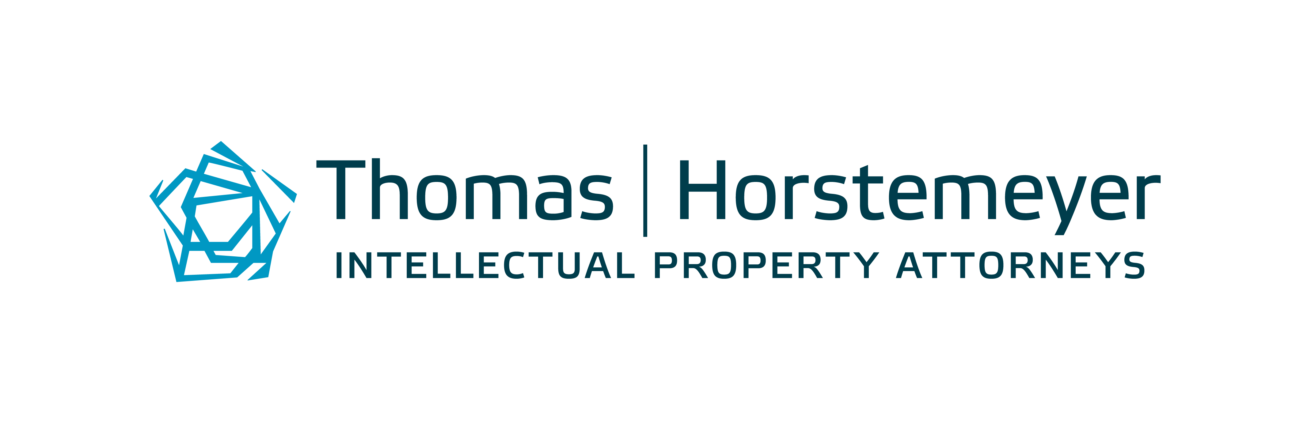 Thomas Horstemeyer LLP Company Logo