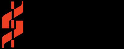 NetImpact Strategies Inc. logo