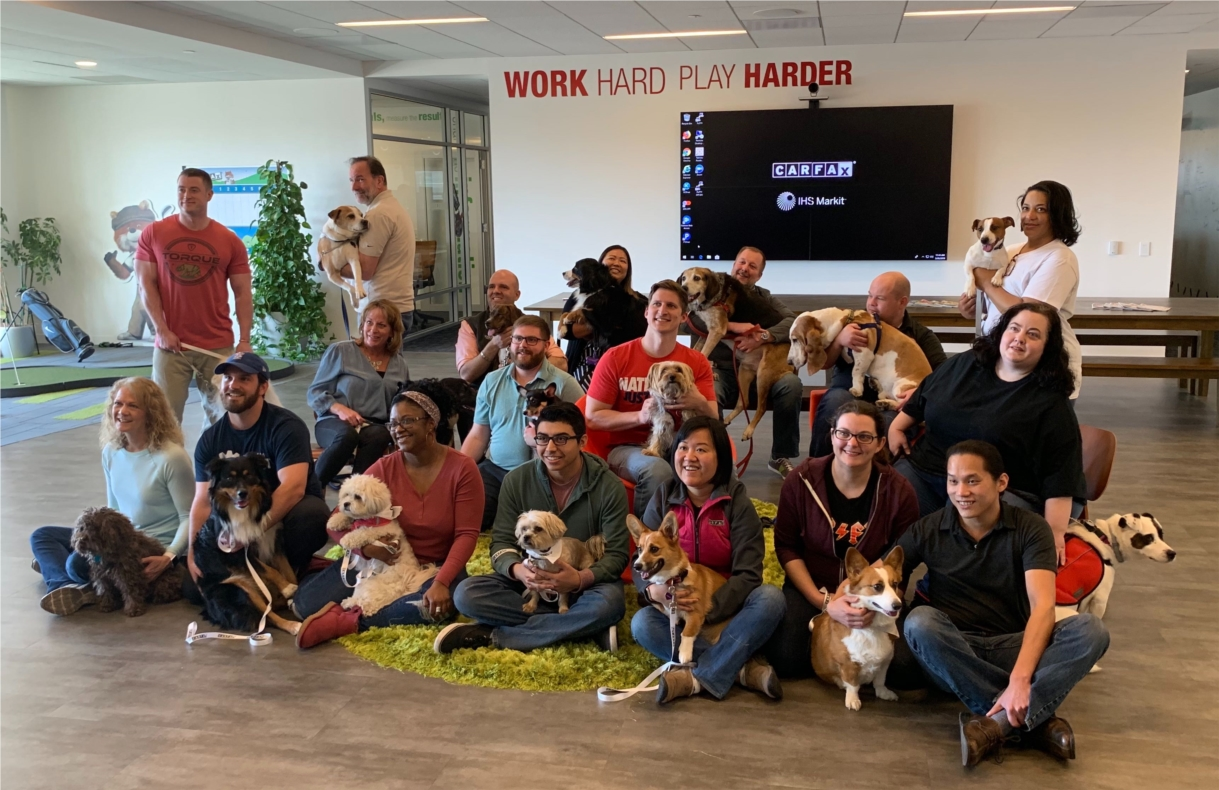 We love having dogs in the office!