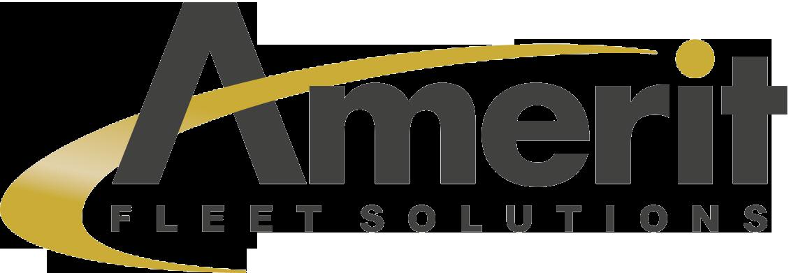 Amerit Fleet Solutions Company Logo