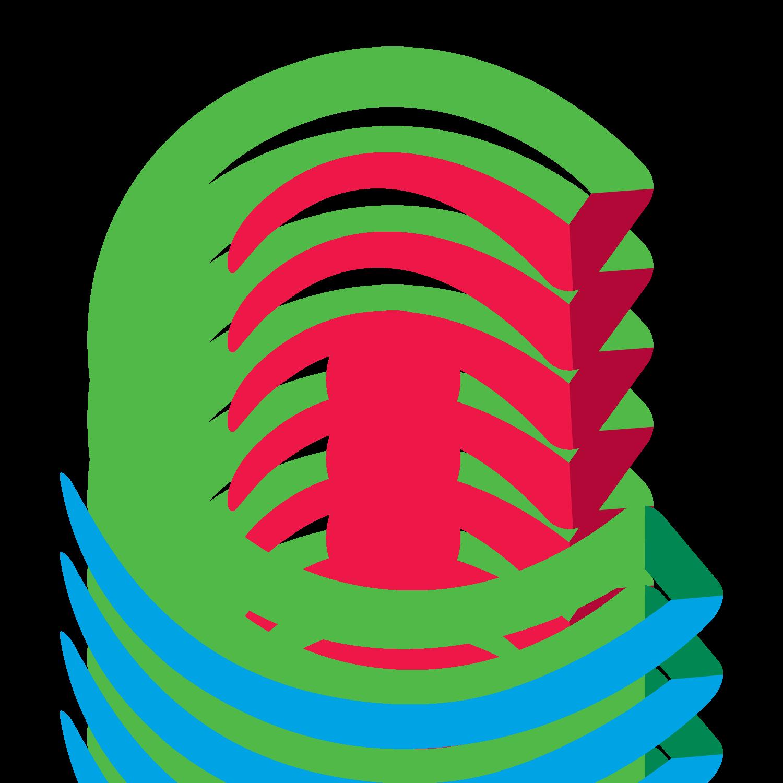 Carespring Healthcare Management logo