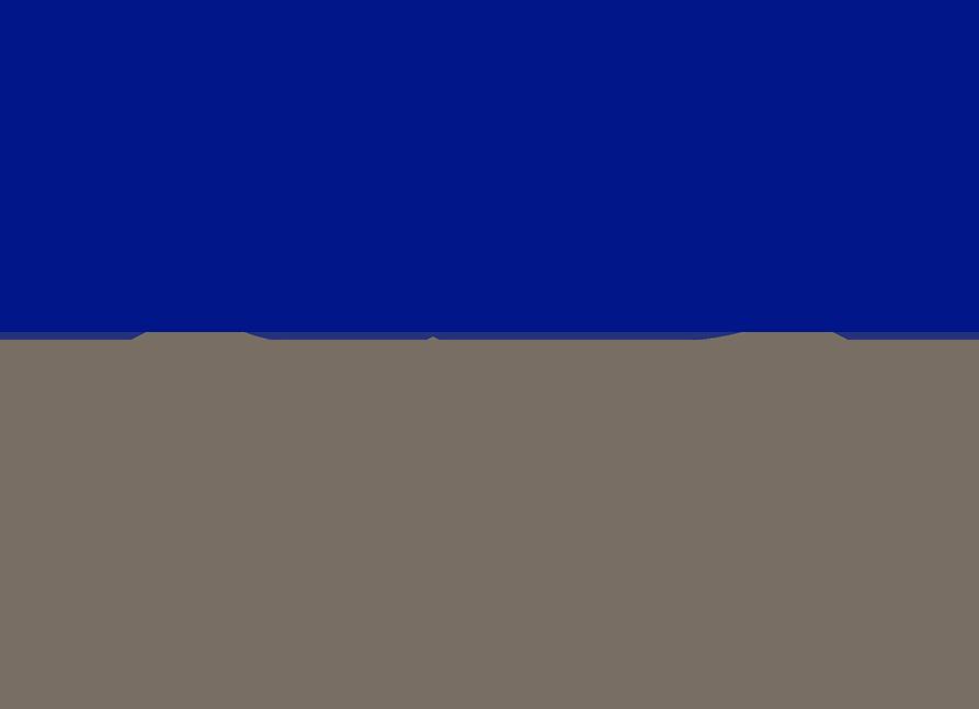 RDI Corporation logo