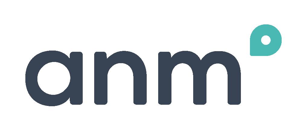 ANM Company Logo