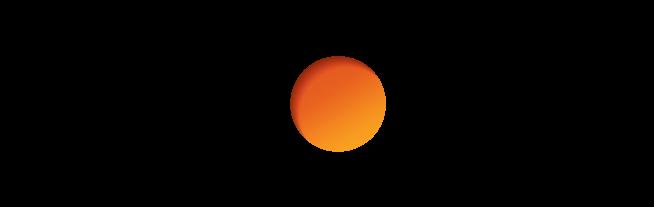 Discover Financial Services Company Logo